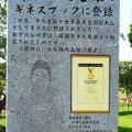 20. ushiku daibutsu guinness_thumb[3]