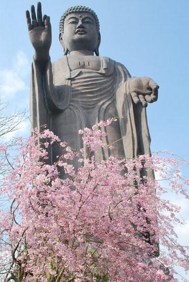 Ushiko - Daybutsu