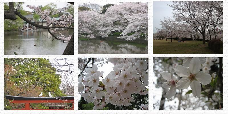 equinoquio da primavera