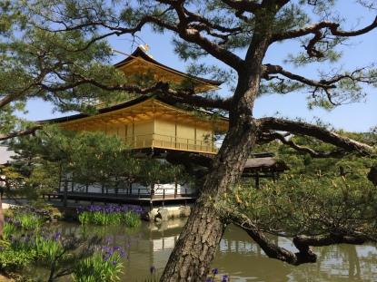 kinkakuji - Kioto- Japão