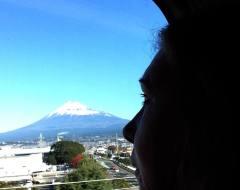 Shinkansen Fuji