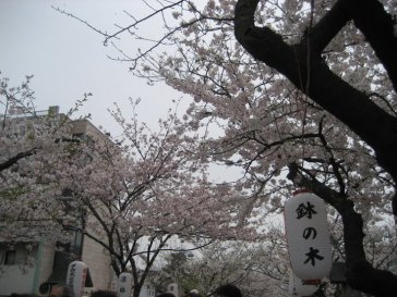 Kamakura - Japão