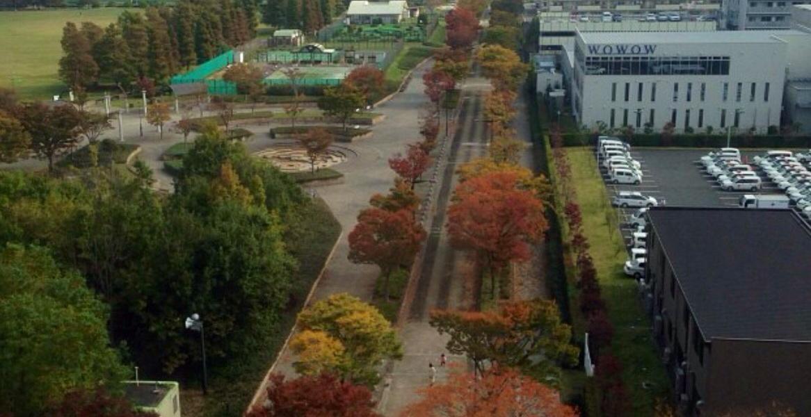toquio no Outono